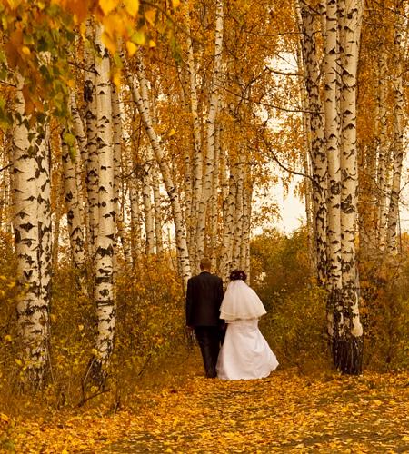 wedding4_500_MG_2743