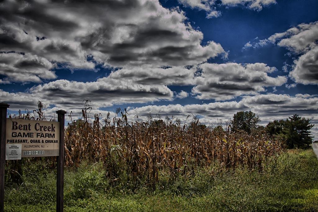 (c)JerseyStyle_Photography_Bent Creek Farm_092013_MG_2383