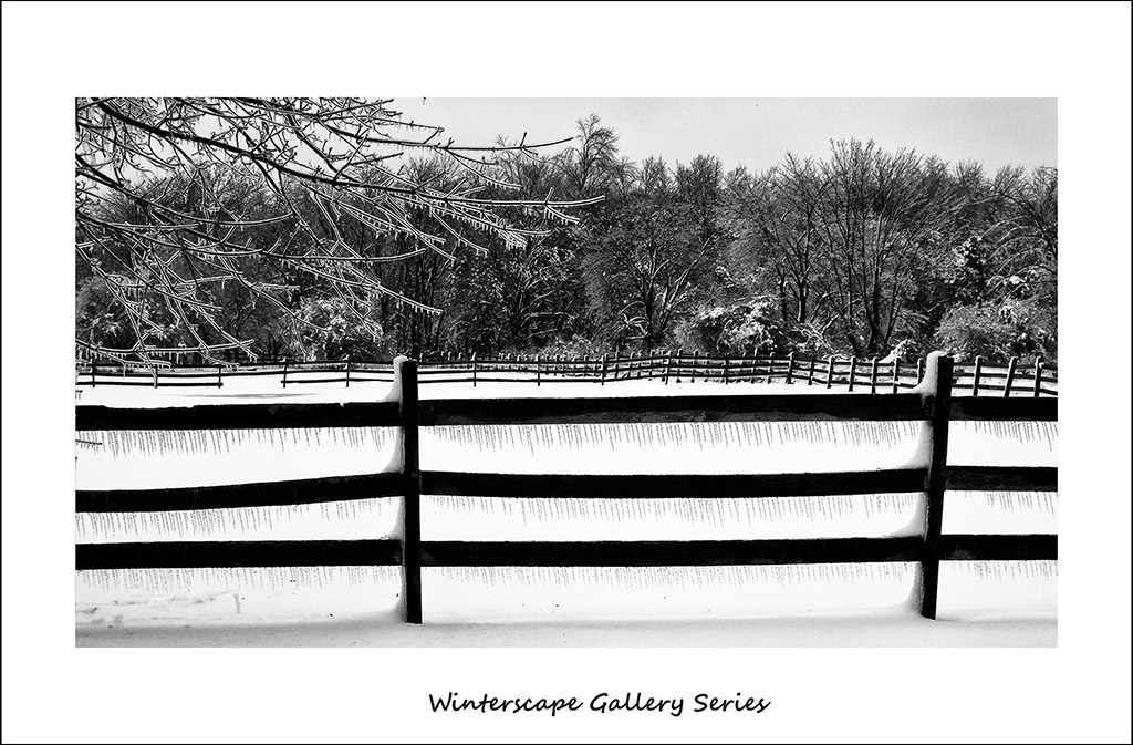(c)JerseyStyle Photography_Ice Fence2_WSframe_020514_0731