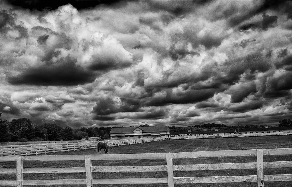 (c)JerseyStyle Photography_Horsefarm2_bw_052014_6146