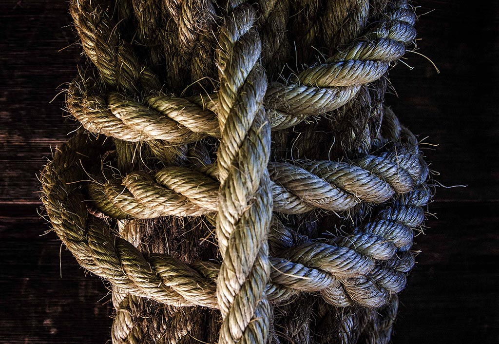 (c)JerseyStyle Photography_knotted3_detail_07052014_9544