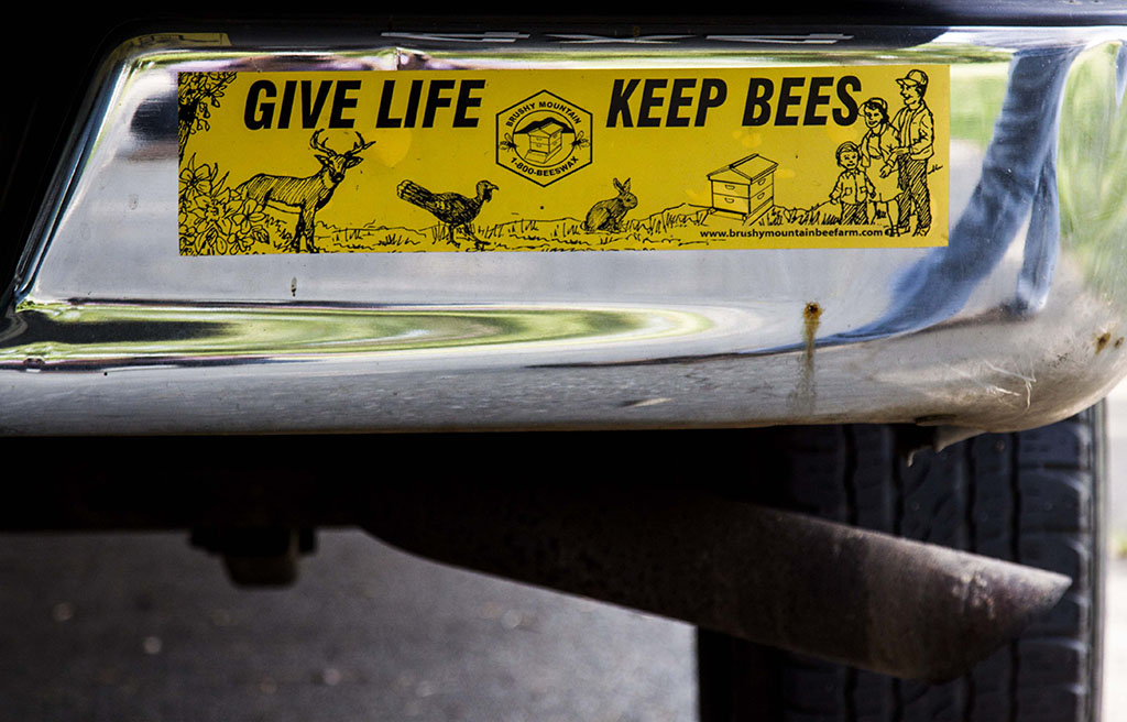(c)JerseyStyle Photography_Keep Bees_082014_MG_1381
