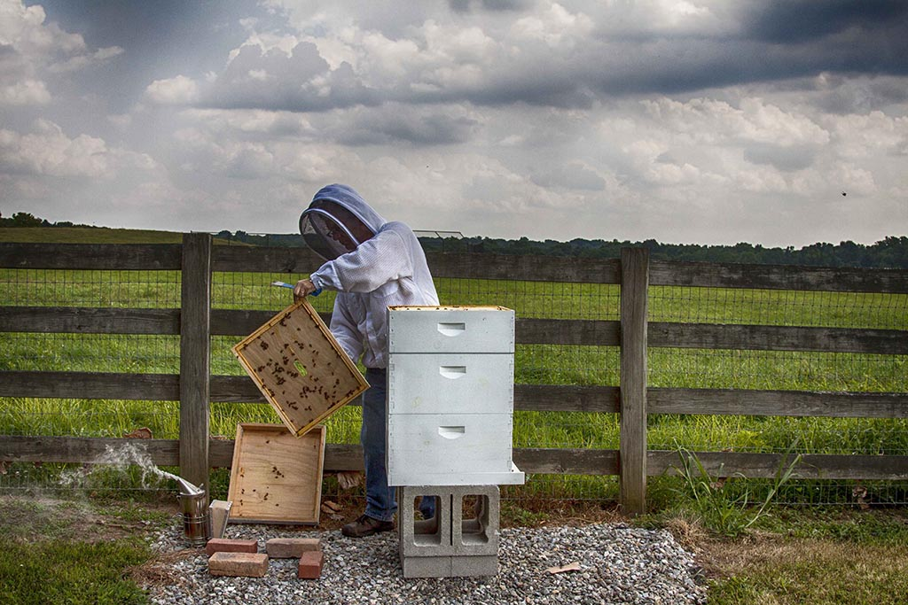 (c)JerseyStyle Photography_The Beekeeper_07312014_1178
