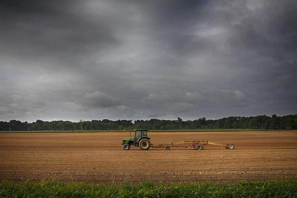 Sod Farmer, Allentown, New Jersey
