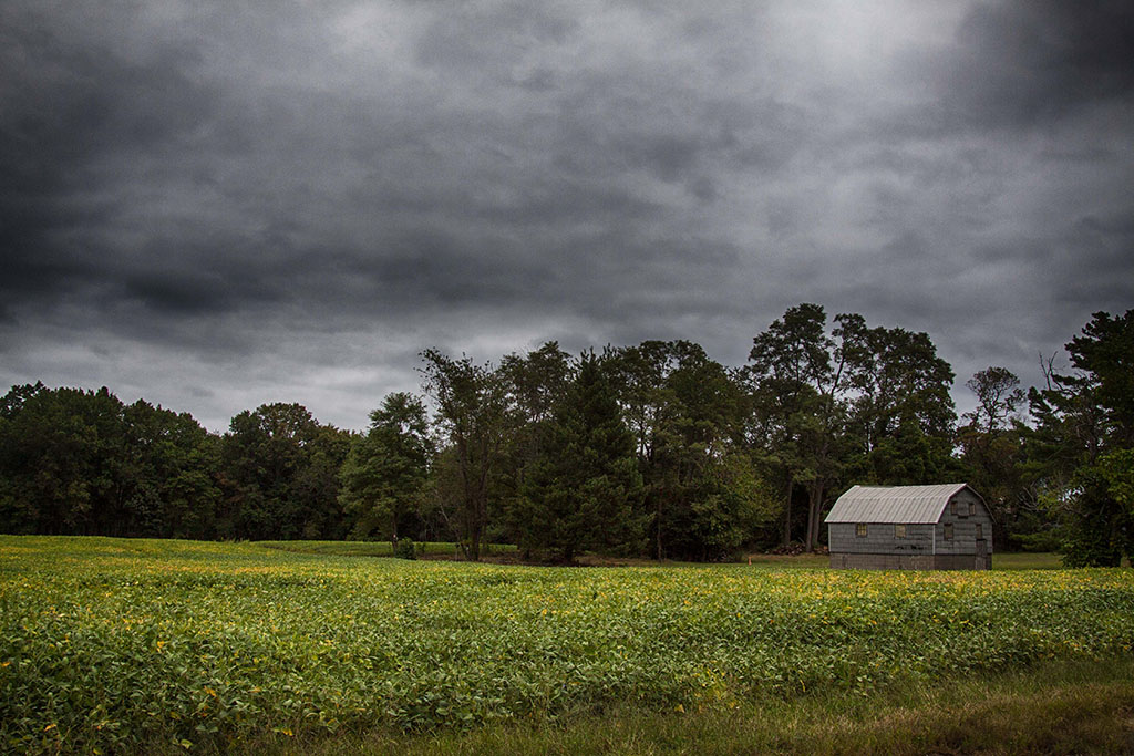 (c)JerseyStyle Photography_524 barn_092014_4567