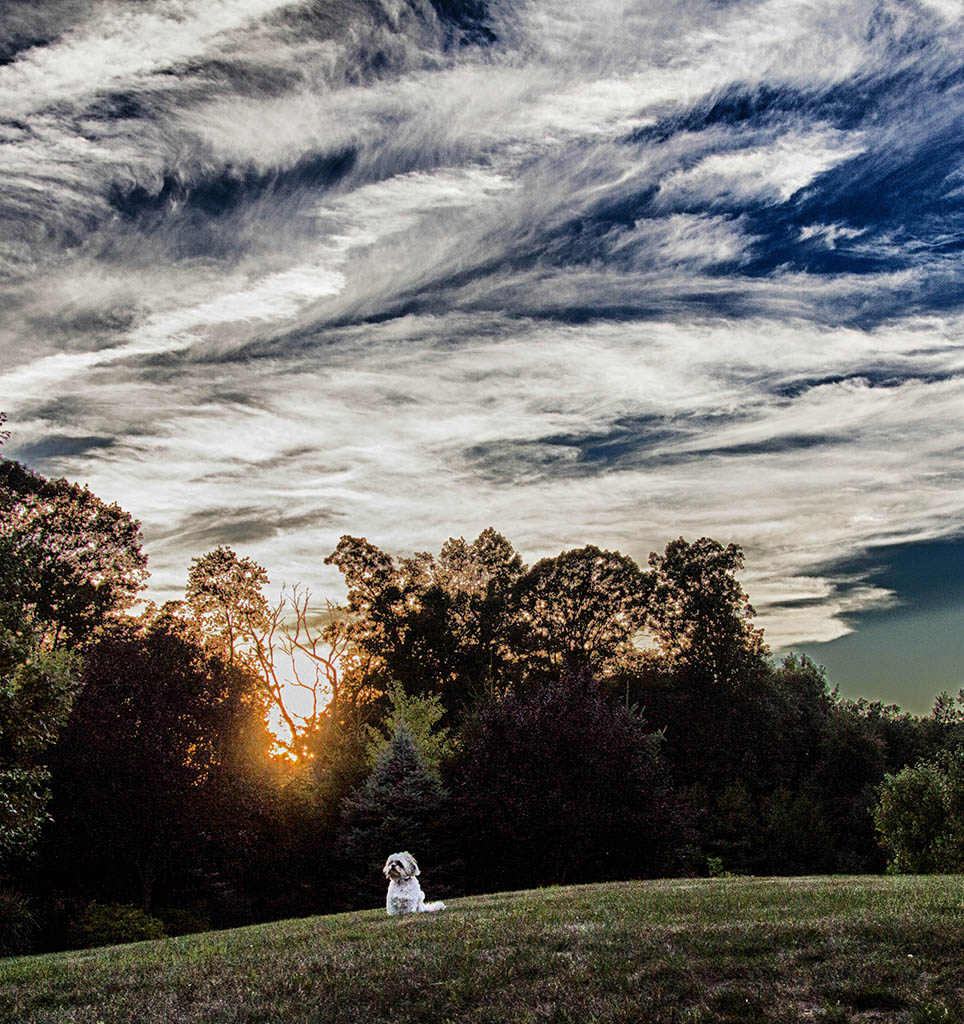 (c)JerseyStyle Photography_End of summer_vert2_09222014_5102