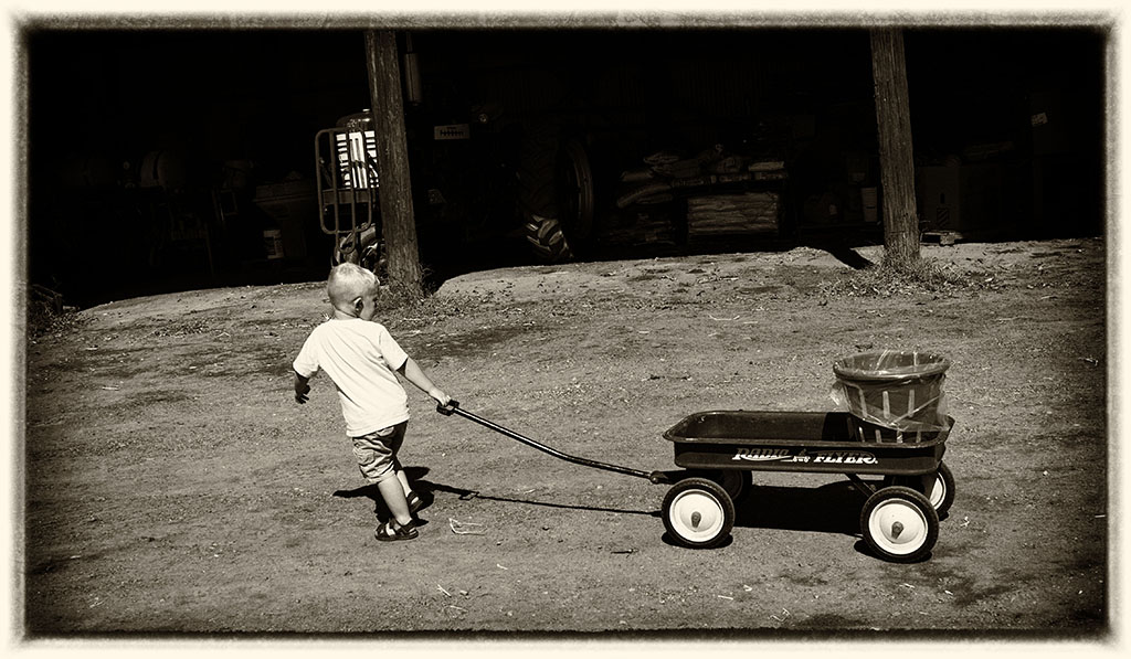 (c)JerseyStyle Photography_Wagon puller_092014_5300