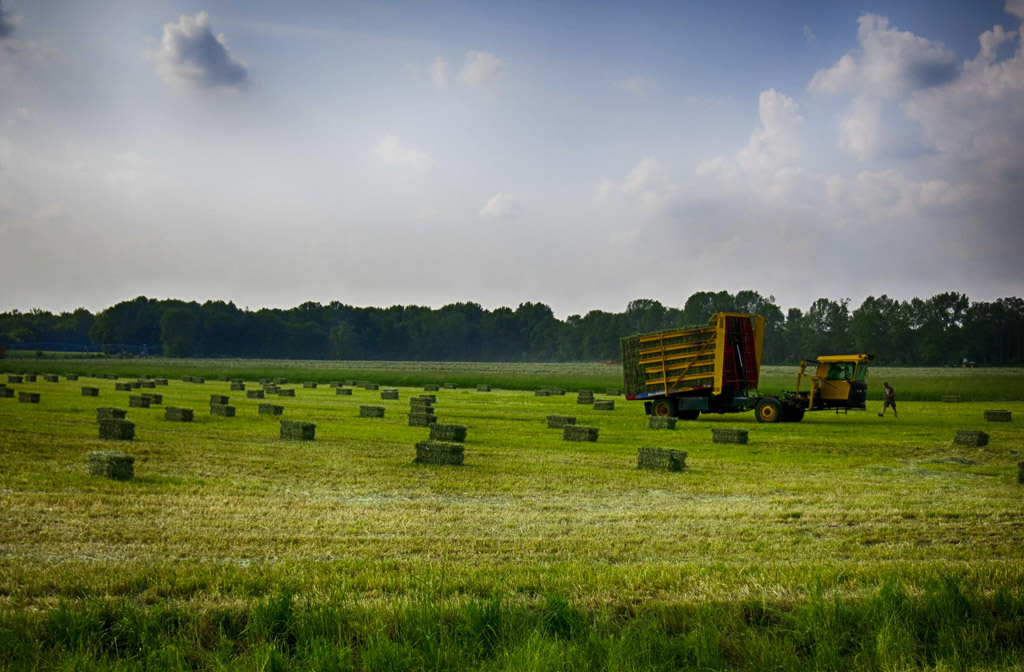 (c)JerseyStyle Photography_tractor1_052716_IMG_2560