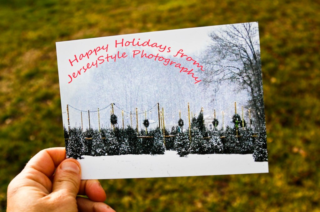 jsp-card-comp3_mg_1182