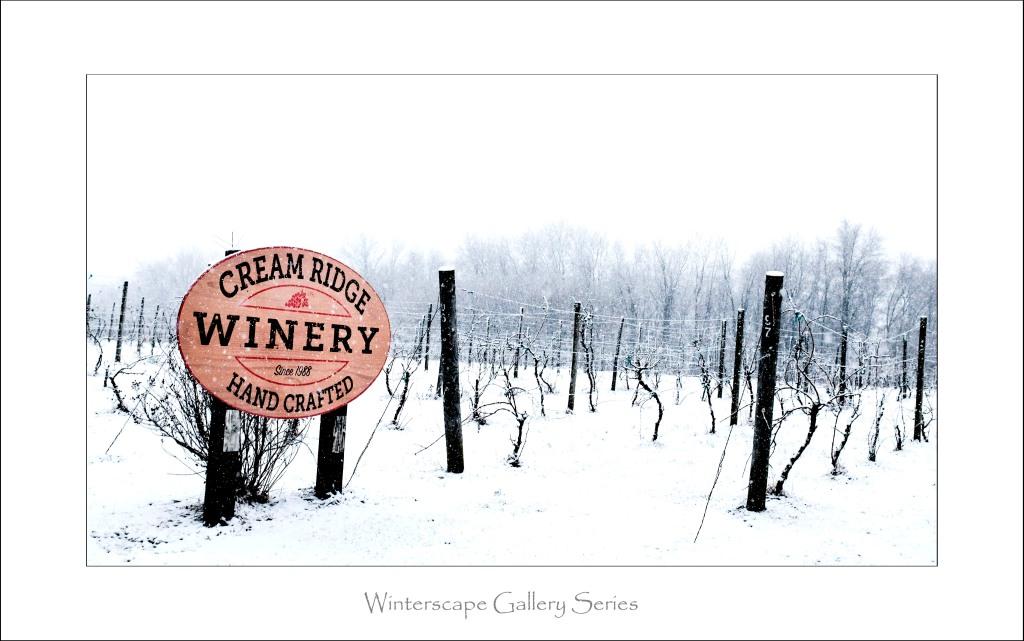 Cream Ridge Winery_2_framed_031017_DSCF5363