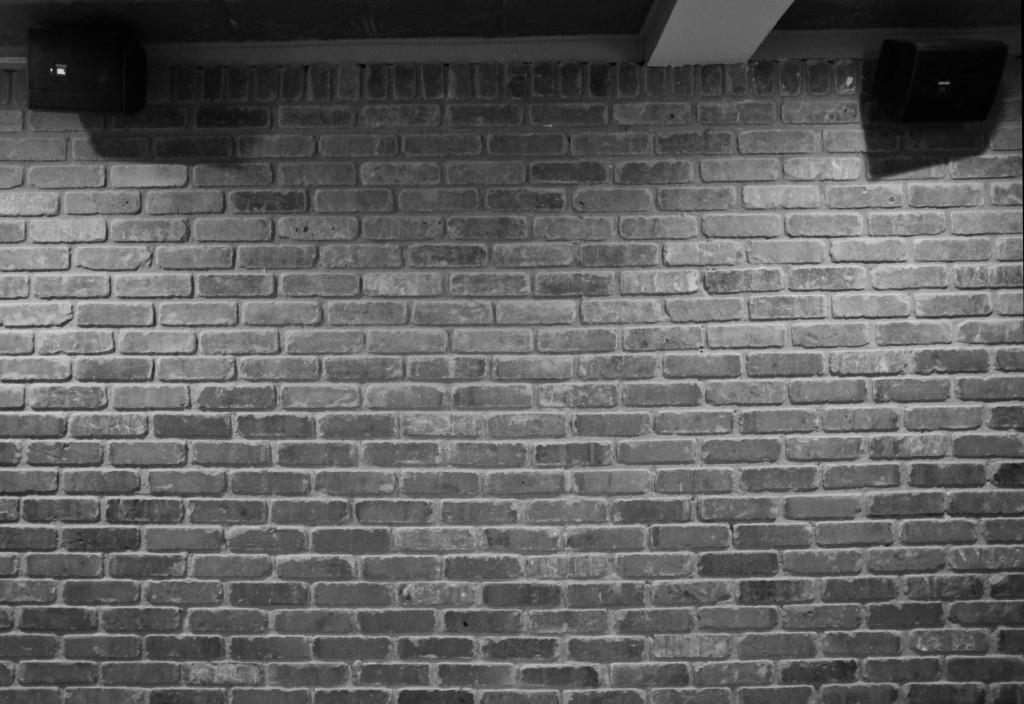 brick wall_042117_DSCF7335
