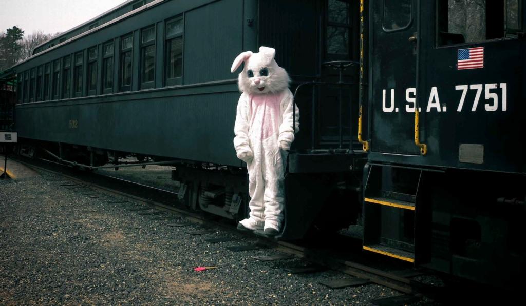 Sad Bunny_2014
