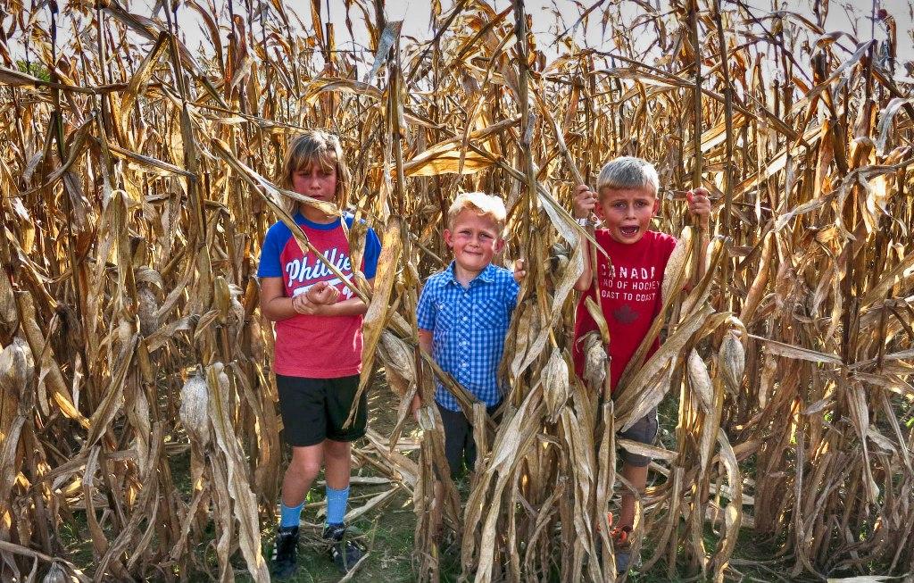 Kids_Corn_2016